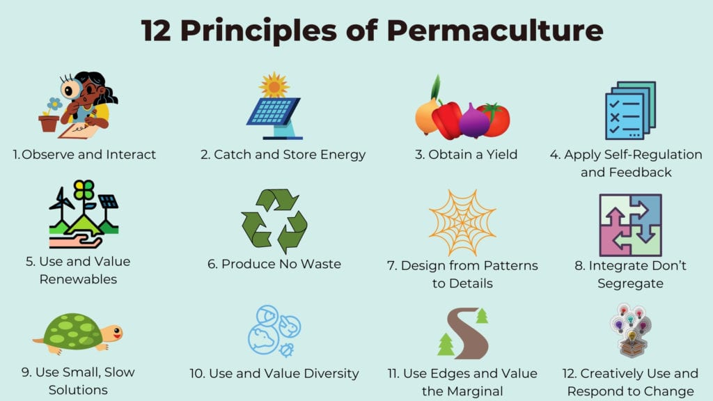 Infographic of the 12 Principles of Permaculture