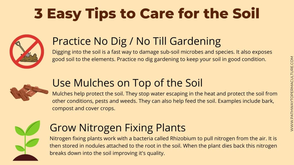 3 Easy Tips to Care for the Soil Infographic