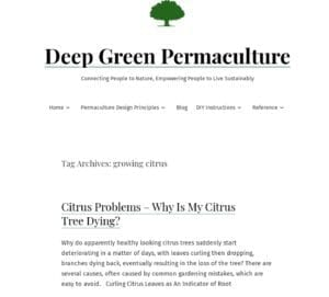 Screen grab of the Deep Green Permaculture website