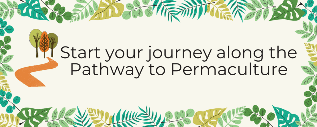 Start your journey along the Pathway to Permaculture for Pathway to Permaculture Website Launch