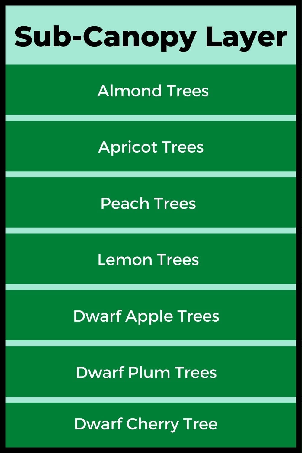 Plants suitable for the sub-canopy of a food forest