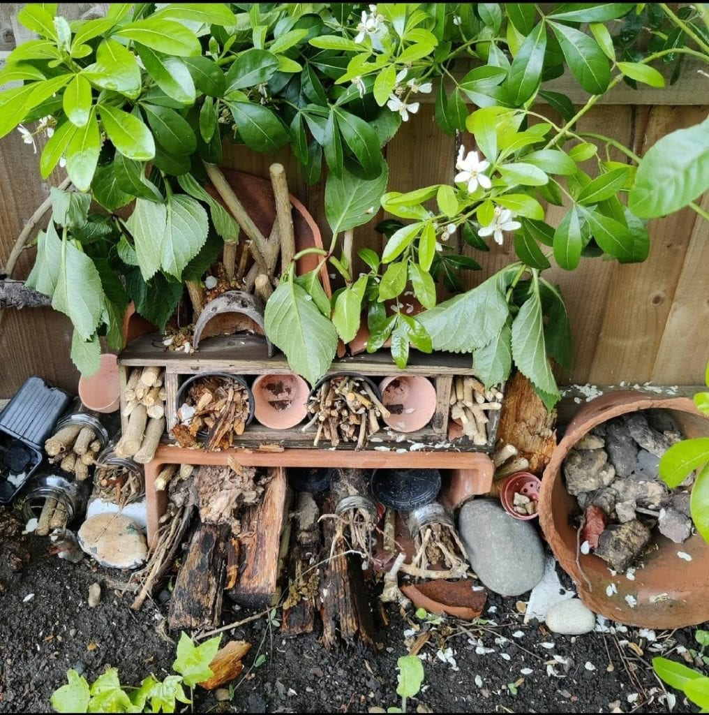 Pathway to Permaculture's very own bug hotel
